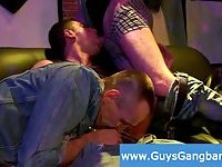 Boys get wild with other guys cocks sucking them