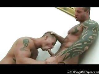 Bodybuilder Begs For A Hard Pounding