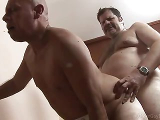 Old Gays Ass Banging