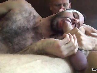 Hairy gay